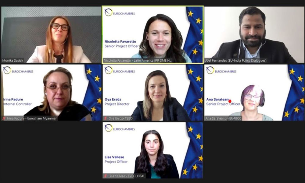 Images from the Global Europe Webinar 2/2